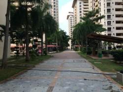 Palm Spring, Kota Damansara