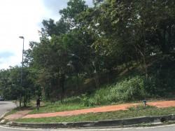 Kota Damansara, Petaling Jaya