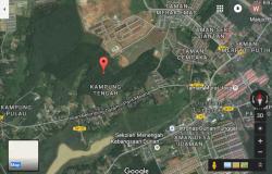 Durian Tunggal, Melaka