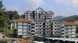 Cameron Highlands, Pahang