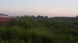 Bentong, Pahang