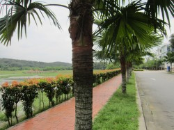 Casabella, Kota Damansara photo by Bryant