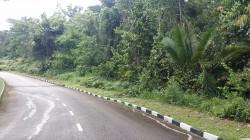 Kayangan Heights, Shah Alam