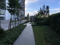 Pandora @ Tropicana Metropark, Subang Jaya
