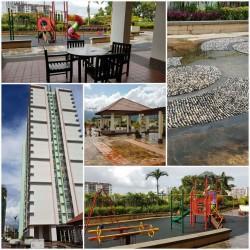 Harmony View, Jelutong