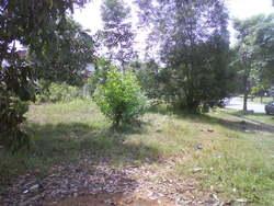 Bandar Tasik Kesuma, Semenyih