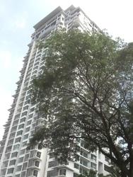 Suasana Bukit Ceylon, Bukit Ceylon