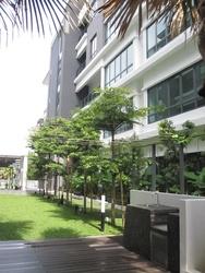 Se terra, Bandar Utama
