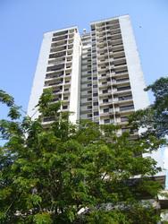 Antah Tower, Dutamas
