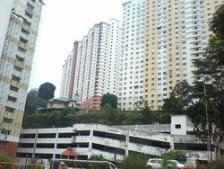 Flora Damansara, Damansara Perdana photo by Elva Cheok