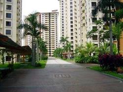 Palm Spring, Kota Damansara photo by Elva Cheok