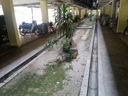 Gugusan Melur, Kota Damansara