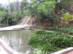 Bentong New Village