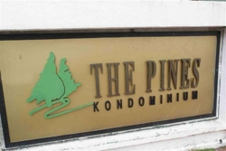 The Pines, Brickfields