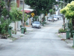 Taman Greenview, Green Lane